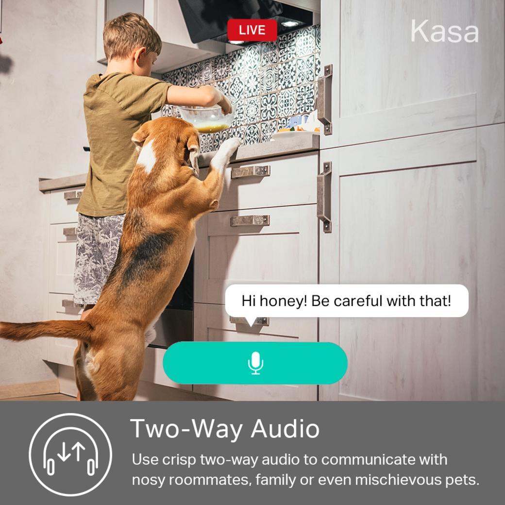 Kasa Spot gallery image two way audio